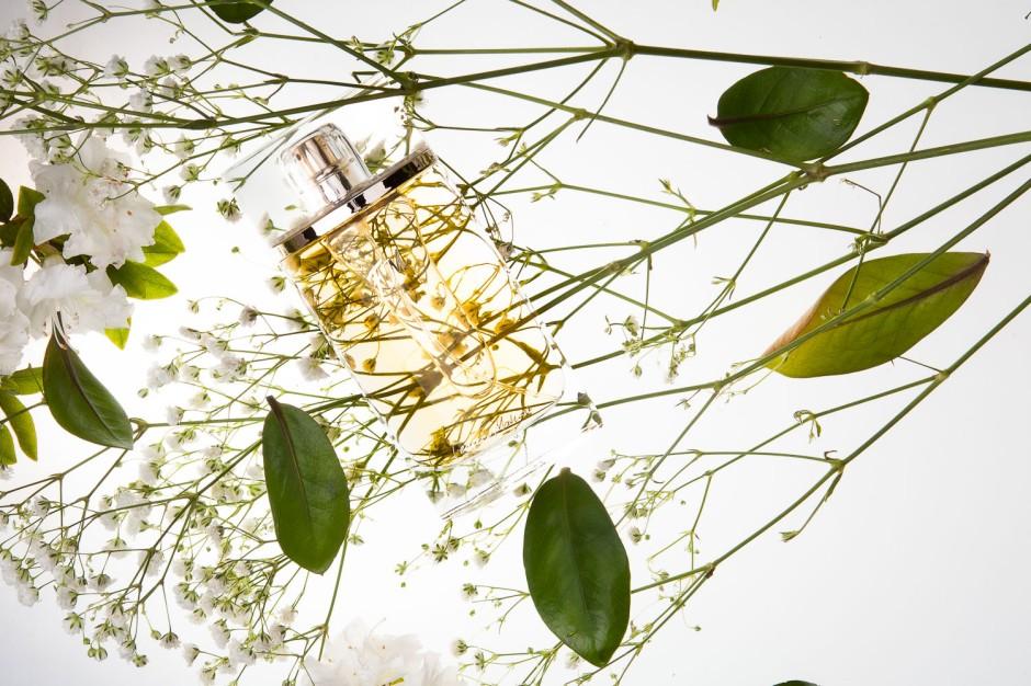 FM 352 Federico Mahora. Charakter: aksamitny, porywający Nuty zapachowe: Nuta głowy: kwiat pomarańczy Nuta serca: jaśmin Nuta bazy: paczula, miód Rodzina zapachowa: Kwiatowa Typ: Prowokujące Pojemność: 50 ml Zaperfumowanie: 20%